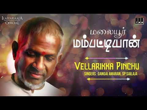 Malaiyoor Mambattiyan Movie Songs | Vellarikka Pinchu | Thiagarajan | Saritha | Ilaiyaraaja Official