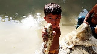 Grandfather's fishing video - Cast Net Fish Catching At Mini Pond In Village | mach dhorar video