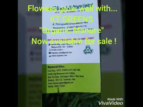 KT GREENS  ORGANIC MANURE retail paxks for sale : Effective use in Horticulture