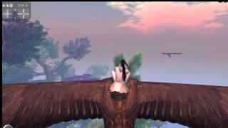 Flying Bald Eagle Promo