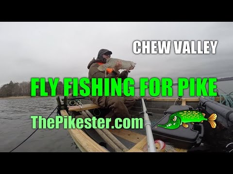 Chew Valley Fly Fishing For Pike (3)