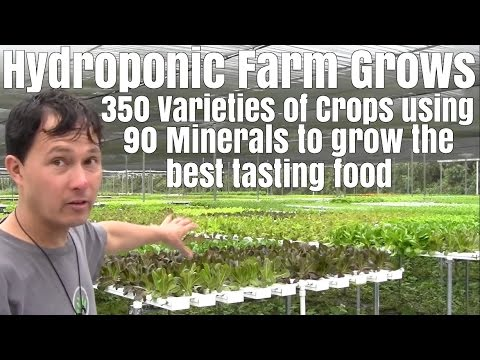 Hydroponic Farm Grows 350 Varieties of Vegetables with 90 minerals to Grow the best tasting food
