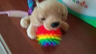 #игрушка#собачка#щенок#детскоевидео уход за игрушкой щенка 🐕🐶🐩😋😍🐩🍉🌴💗💦