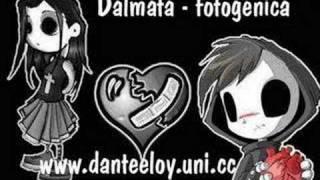 Dalmata - fotogenica