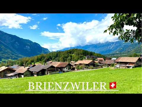 Brienzwiler Village -Switzerland- 🇨🇭Scenic Mountain Nature with Relaxing Music