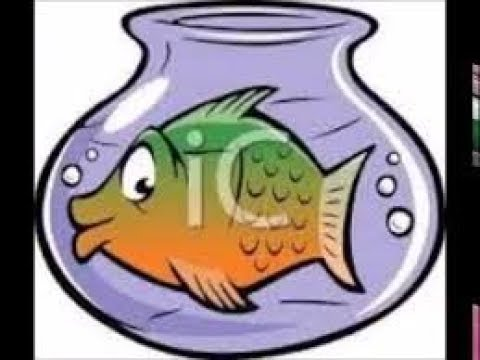 درس السمكة والحرية للصف الرابع المنهج الجديد