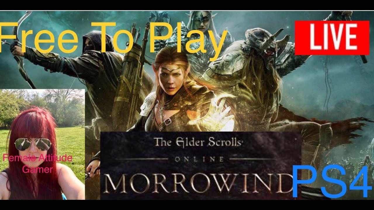 Elder Scrolls Online Morrowind Sunday Morning Steam No Mic