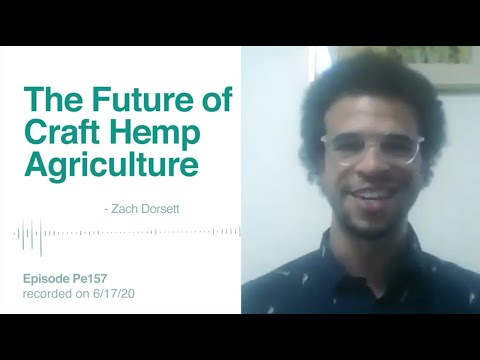 What the Future of Craft Hemp & CBD Production Might Look Like