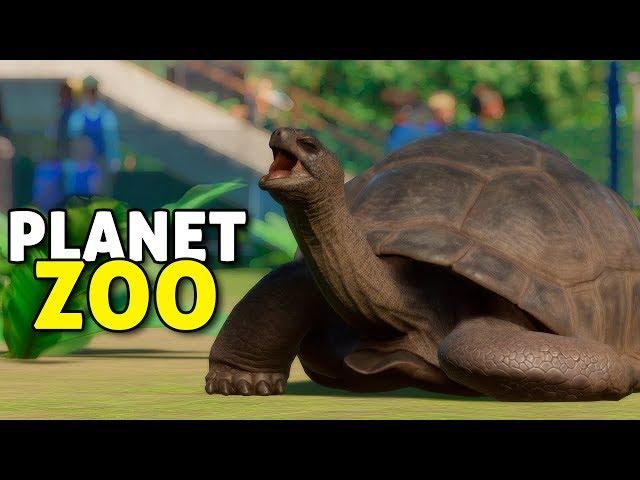 Comendo junto com as tartarugas | Planet Zoo #03 - Sandbox Gameplay PT-BR