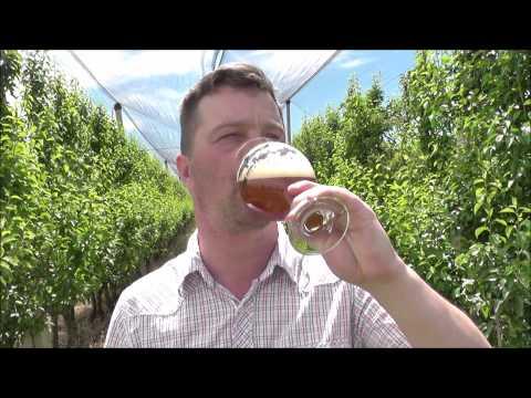 Birra Baladin Super Bitter | Italian Craft Beer Review