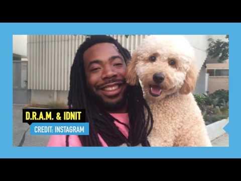 D.R.A.M. Loves His Dog Idnit!