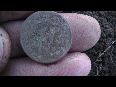 Metal Detecting Old Coins In The Woods