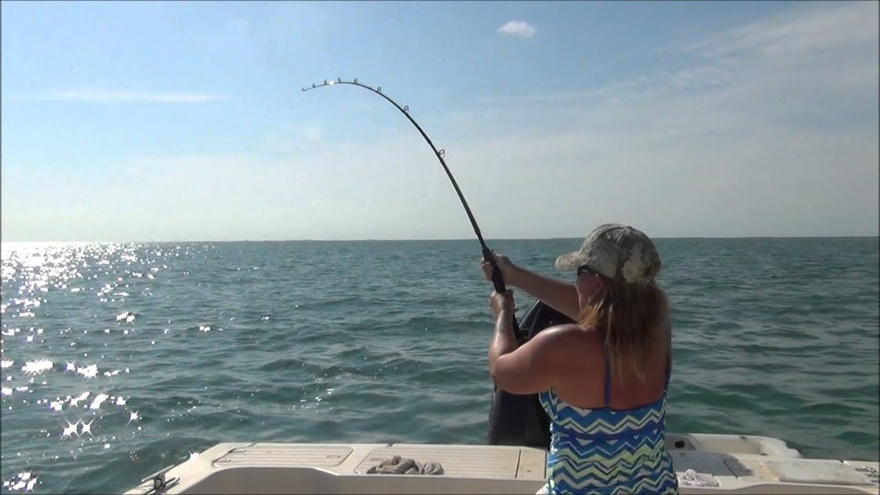 Shark fishing at the 7 mile bridge marathon florida keys for Fishing marathon fl