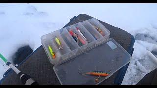 Зимняя рыбалка в Январе 2021 Зимняя рыбалка на жерлицы и балансир Рыбалка на Оке
