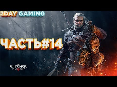 Wild Hunt - The Witcher 3 (2DAY Gaming) ЧАСТЬ#14