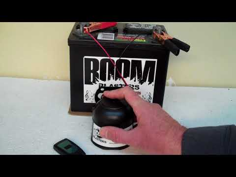 Raven Bird Sounds Car Horn Wireless