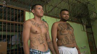 Borrarse los tatuajes, una aspiración de expandilleros en El Salvador | AFP