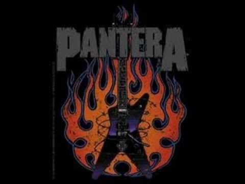 Pantera Cat Scratch Fever Lyrics