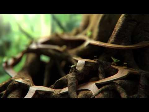 CGI Animated Shorts HD  'Busy'   by Francisco Kitzberger