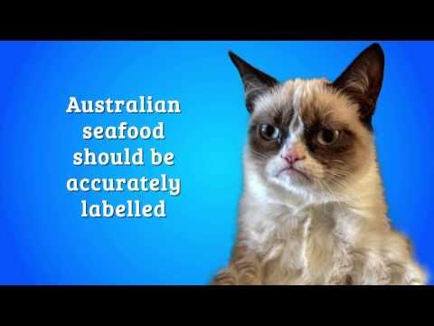 Grumpy Cat Demands Accurate Seafood Labelling In Australia