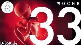 33. SSW / 33. Schwangerschaftswoche ✪ D-SSK.de