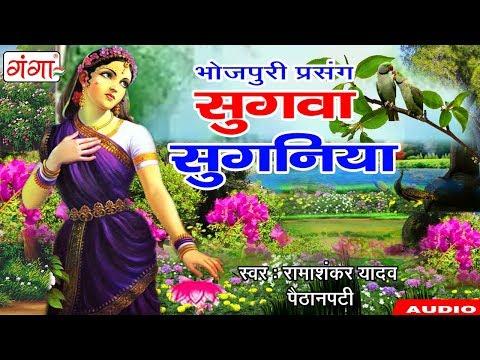भोजपुरी प्रसंग - सुगवा सुगनिया - 2018 Bhojpuri Lokkatha Prasang | Prasang By Rama Shankar Yadav