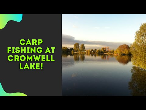 Carp Fishing At Cromwell Fisheries    Session 2   2019