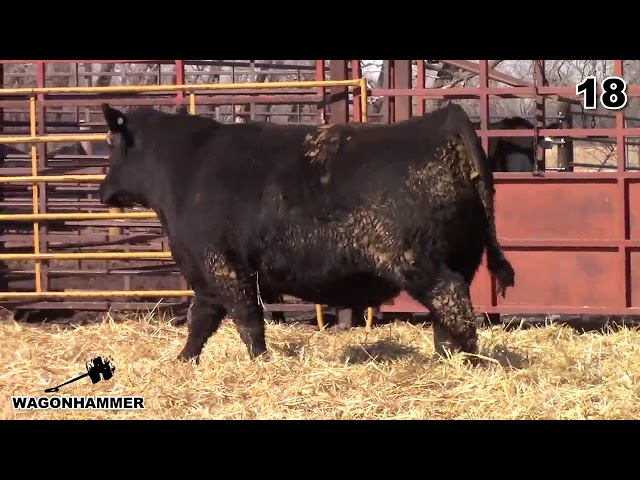 Wagonhammer Ranches Lot 18