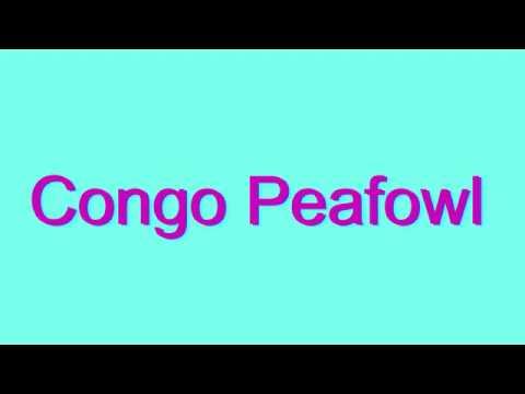 How to Pronounce Congo Peafowl
