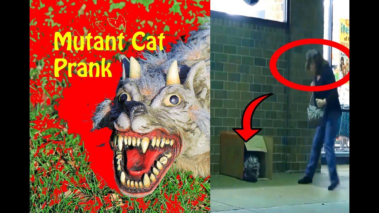 Giant Mutant Cat Prank