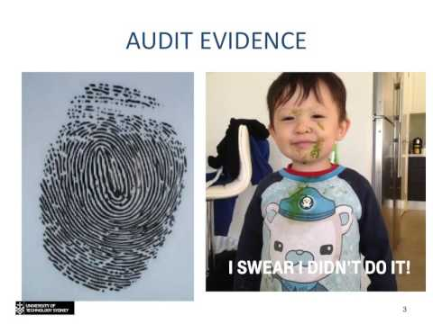 Topic 4 - Audit Evidence