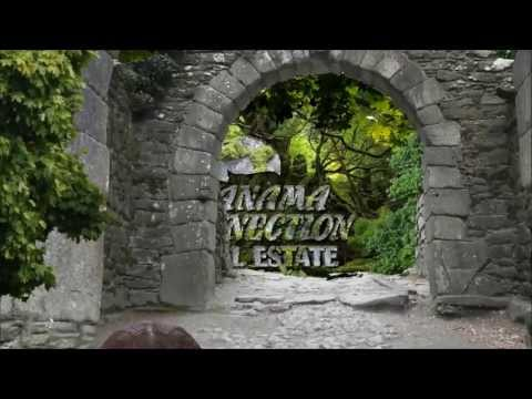 Panama Connection Real Estate - A Paradise For Eco-Lovers