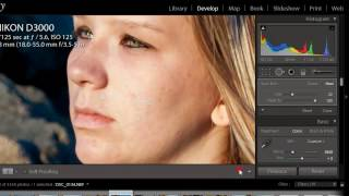 Lightroom 4 Skin Softening