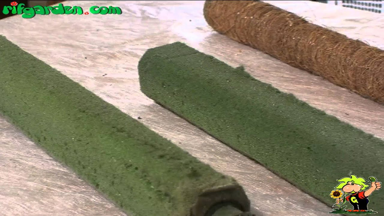 Watch How to Make a Philodendron Pole video