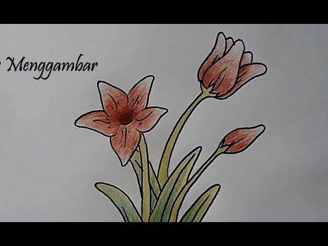 Gambar Gradasi Bunga Mudah - Koleksi Gambar Bunga
