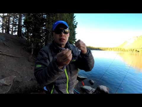 Basic Trout Rigging Tutorial - Lake Mary, CA