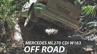 Mercedes Benz M-Class ML270 W1…