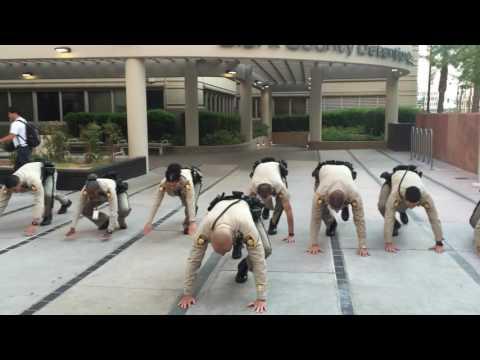DSD 22 pushup challenge