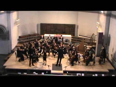 Mozart Sinfonia Concertante Movement 2