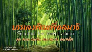 Download บรรเลงพิณเพื่อสมาธิ : Sound for meditation Mp3 and Videos