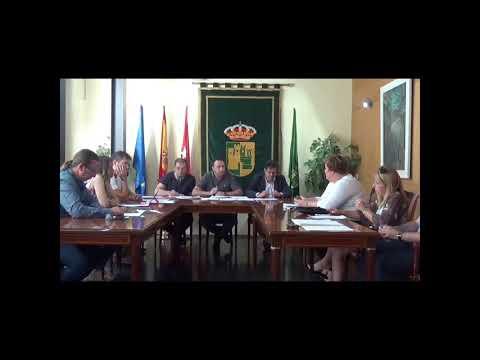 Pleno Municipal 29-06-2017