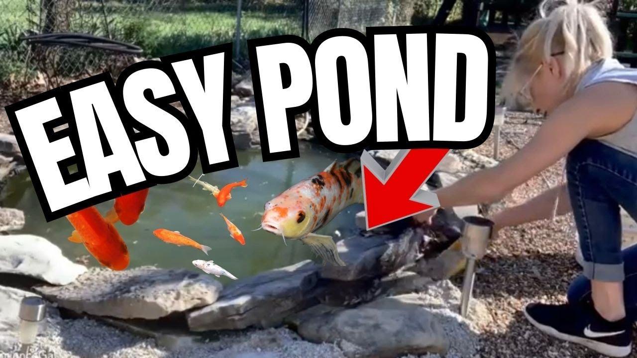 Backyard Fish Pond Maintenance - YouTube