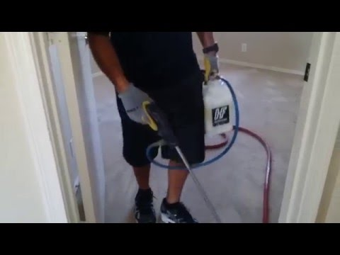 How To Professional Carpet Cleaning Dirty Carpets
