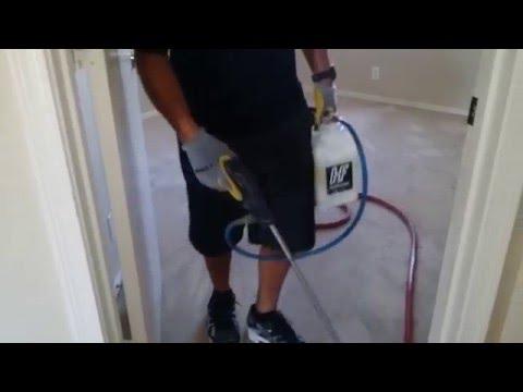 Can i steam clean my carpet myself