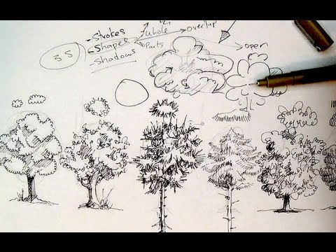 Pen & Ink Drawing Tutorials | How to draw trees