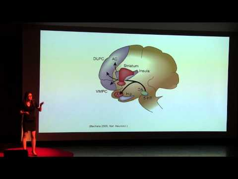 The brain is our last frontier and consciousness is expanding | Dr. Heather Berlin | TEDxYouth@KC