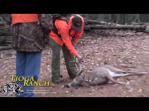 Whitetail Deer Hunting In PA - Kill Shots, Guided Whitetail Deer Hunts | Tioga Ranch