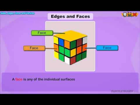 Edges and Faces  - Geometry Lesson for 2nd Graders