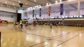 KOREA KINBALL 라이브 방송