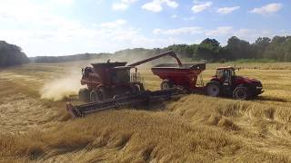Wheat Harvest 2017